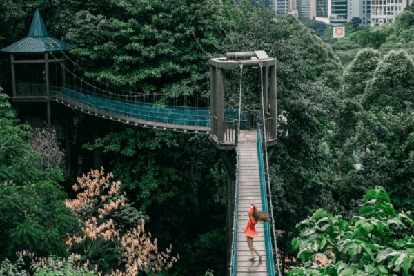 KL Eco Forest